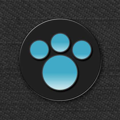 The PAW Symbol